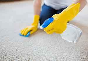 Cleaning Services in Northridge CA