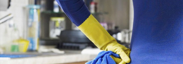 Professional House Cleaners in Camarillo CA Help You Achieve a Healthy Estate