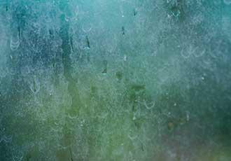 hard water stains windows