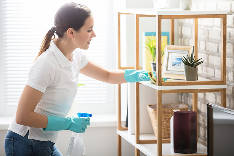 Beautiful Woman Cleaning Shelf in Living Room